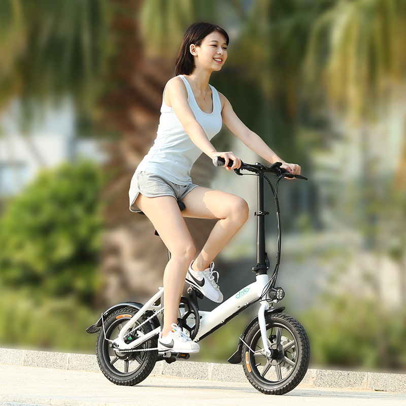 FIIDO D3 Folding Power Assist Eletric Bicycle